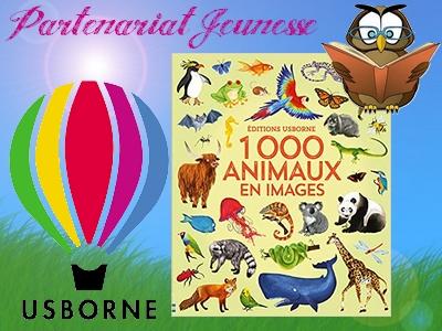 1000 animaux en images Usborne imagier avis critique chronique blog maman assistante maternelle