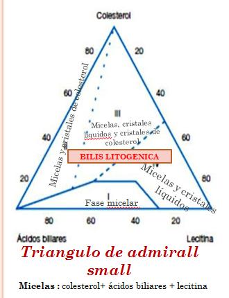 MEDICINA: Triangulo de admirall small