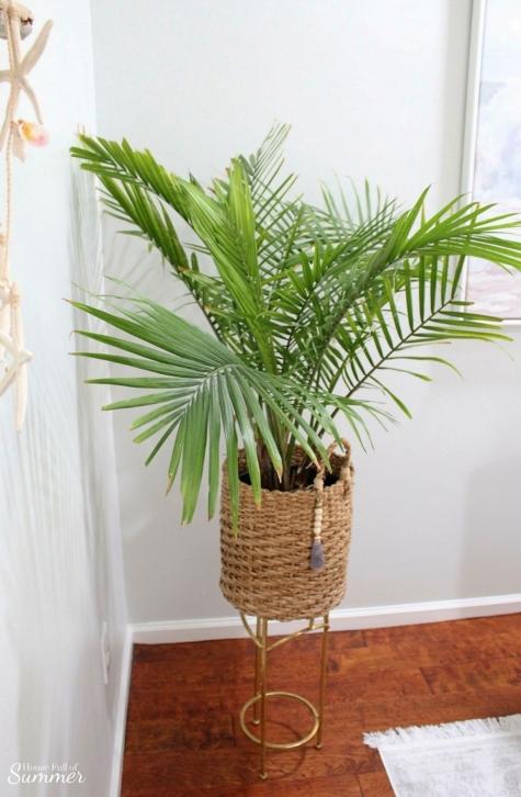 Basket Planter Ideas