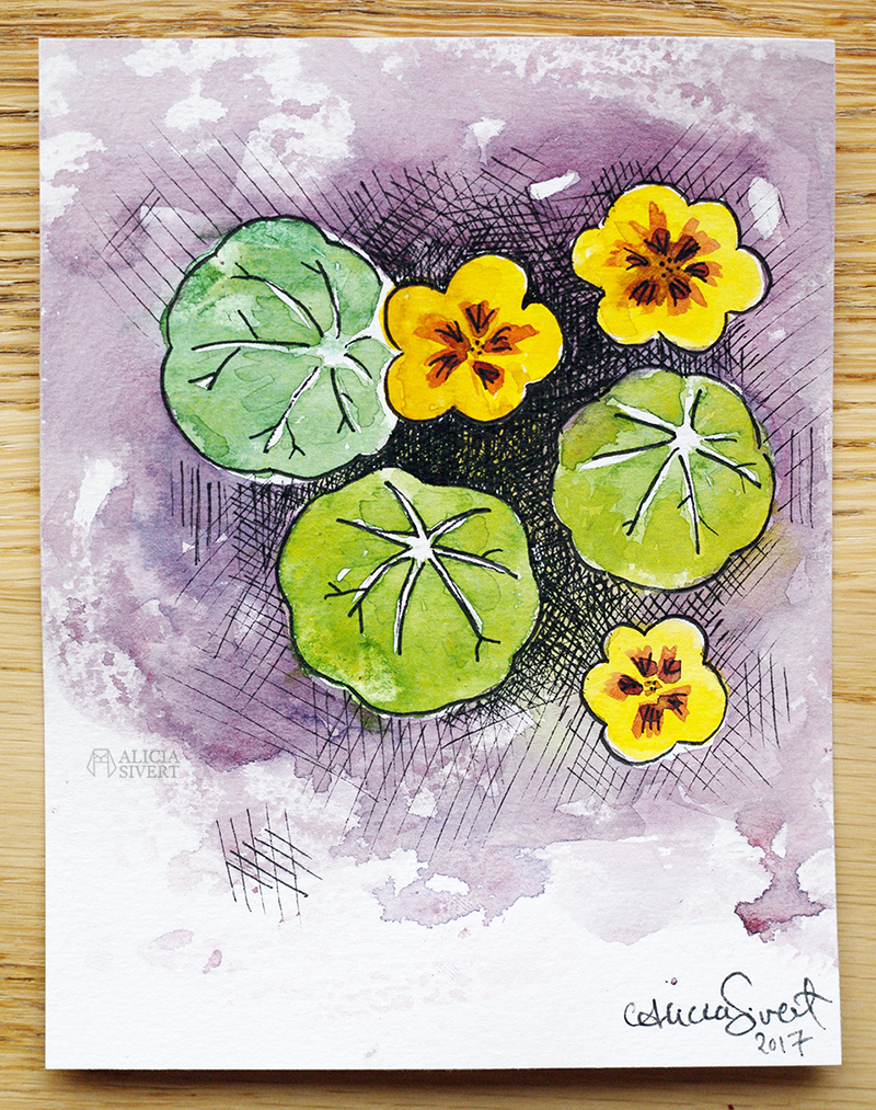 aliciasivert alicia sivertsson siver krasse blomma växt blad växter måla skapa akvarell akvarellmåleri aquarelle water colour color watercolor watercolour gul lila komplementfärger komplementfärg färgblandning billiga akvarellpapper kreativitet diy do it yourself tackkort tack kort