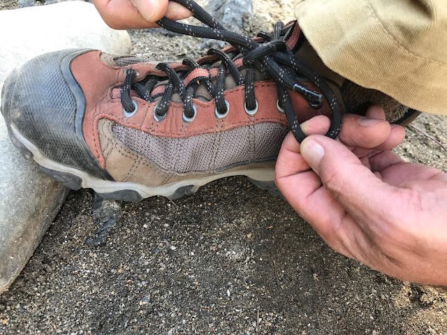 Oboz Firebrand II Low Hikers