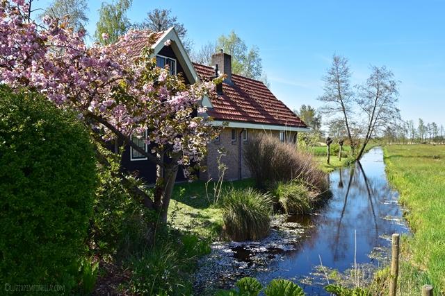 travel | holland familienreise - wochendtrip nationalpark weerribben-wieden  | luziapimpinella.com