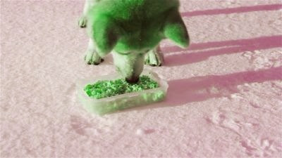 dosis diaria del perro akita