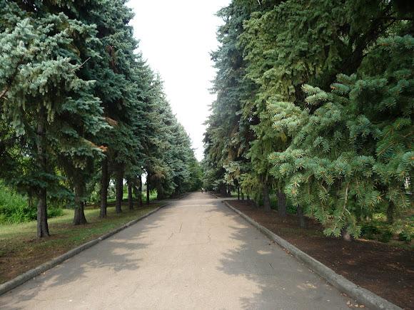 Донецьк. Ботанічний сад