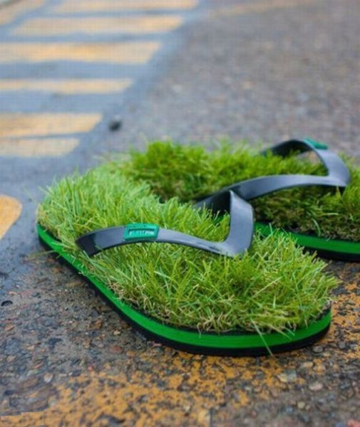 herbs grow on flapper shoes