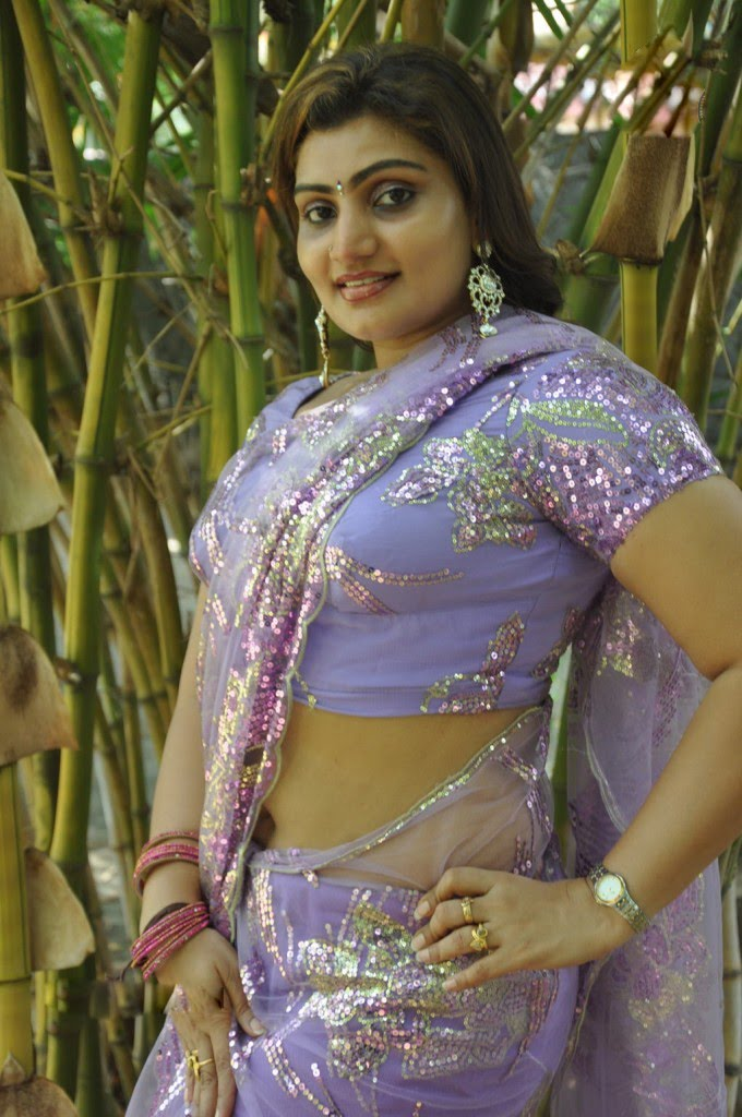 Tamil Aunty Babilona Hot Cleavage And Navel Show Photos