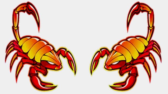 Compatibilità tra Scorpione e Scorpione in amore
