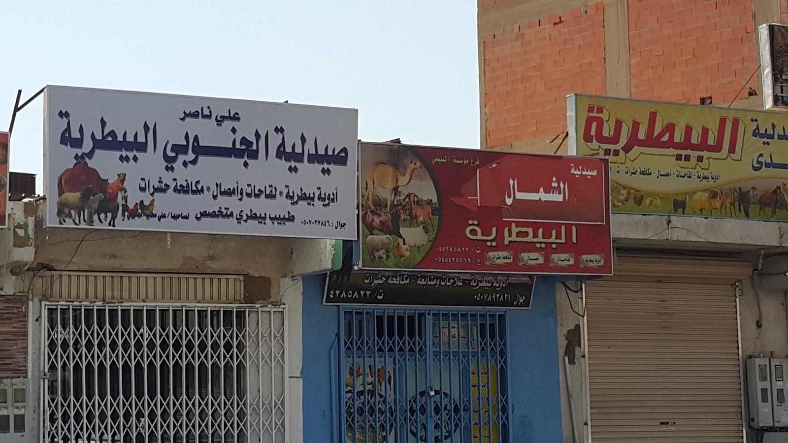 Incontri in Arabia Saudita espatriati