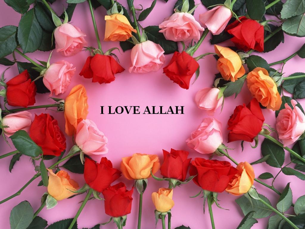 Download Quot I Love Allah Quot Flowers Wallpaper 1024 X 768