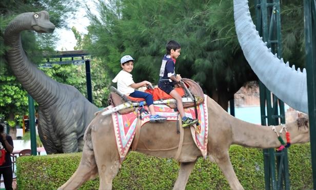 Jurassic-Park-Camel-Horse-Ride-delhi