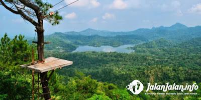 Pemandangan Kalibiru Wisata Alam Yogyakarta
