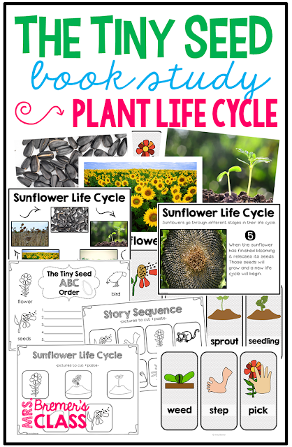 The Tiny Seed by Eric Carle book study companion activities and Plant Life Cycle Unit. Perfect for whole class guided reading, small groups, or individual study packs. Packed with lots of fun literacy ideas based on the plant life cycle and guided reading activities. Common Core aligned. K-2 #bookstudies #bookstudy #picturebookactivities #literacy #guidedreading #ericcarle #thetinyseed #springbooks #bookcompanion #bookcompanions #1stgradereading #2ndgradereading #kindergartenreading