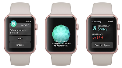 Apple WatchOS 3 Manual Guide and Tutorial