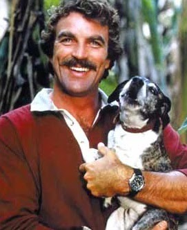 Opinion you photo tom selleck nu