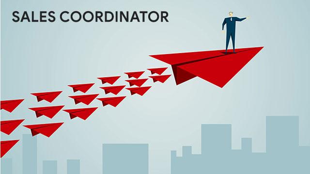 Pengertian Sales Coordinator Tugas dan Tanggung Jawabnya