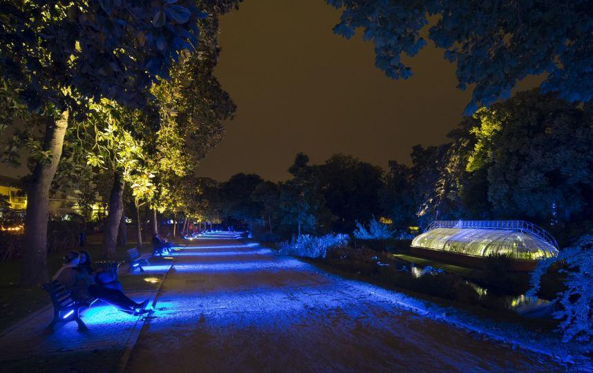 Ephémères : Le jardin des plantes de Nantes la nuit