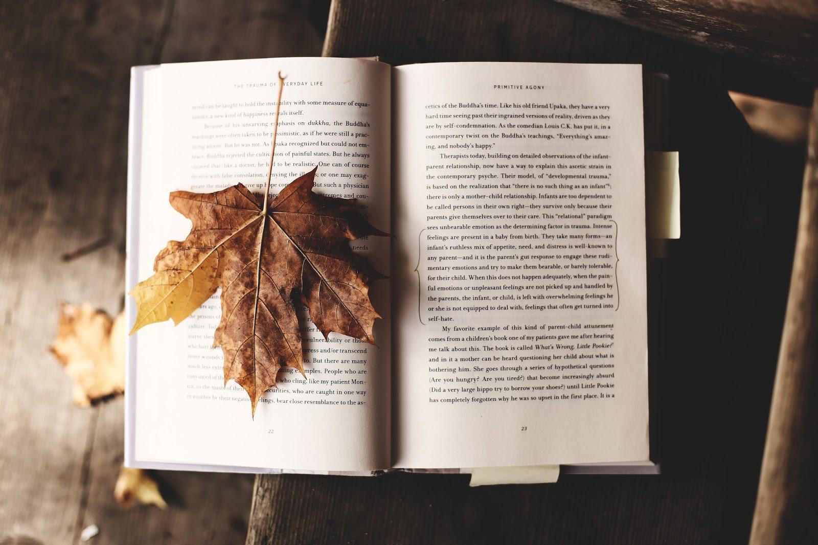 jak-polubic-jesien, wyzwanie-jesienne
