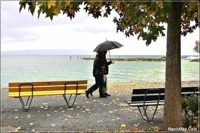 đôi tình nhân dìu nhau đi dưới cơn mưa mùa thu
