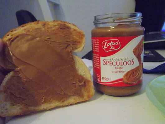 """Speculoos and the New European Parliament"""