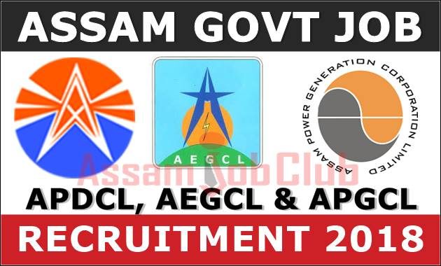 APDCL, AEGCL and APGCL Recruitment 2018 - Assistant Accounts Officer/ Office Cum Field Assistant/ Driver/ Sahayak (1950+ Posts) 1
