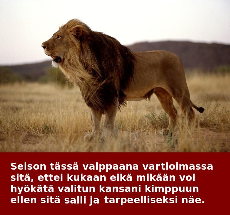 Leijona Unessa