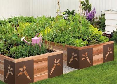 Benefits of Using Raised Vegetable Garden Design