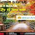 Autumn Japan 7D6N