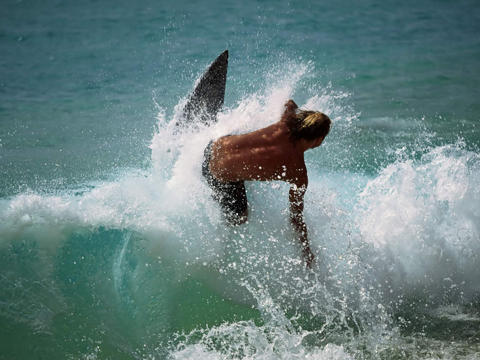 water sports surfing wallpapers