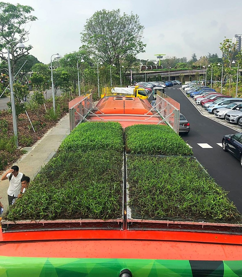 The special service ferried visitors to the Singapore Garden Festival Horticulture Show, which ended yesterday, to and from Chinese Garden MRT station and Lakeside Garden.