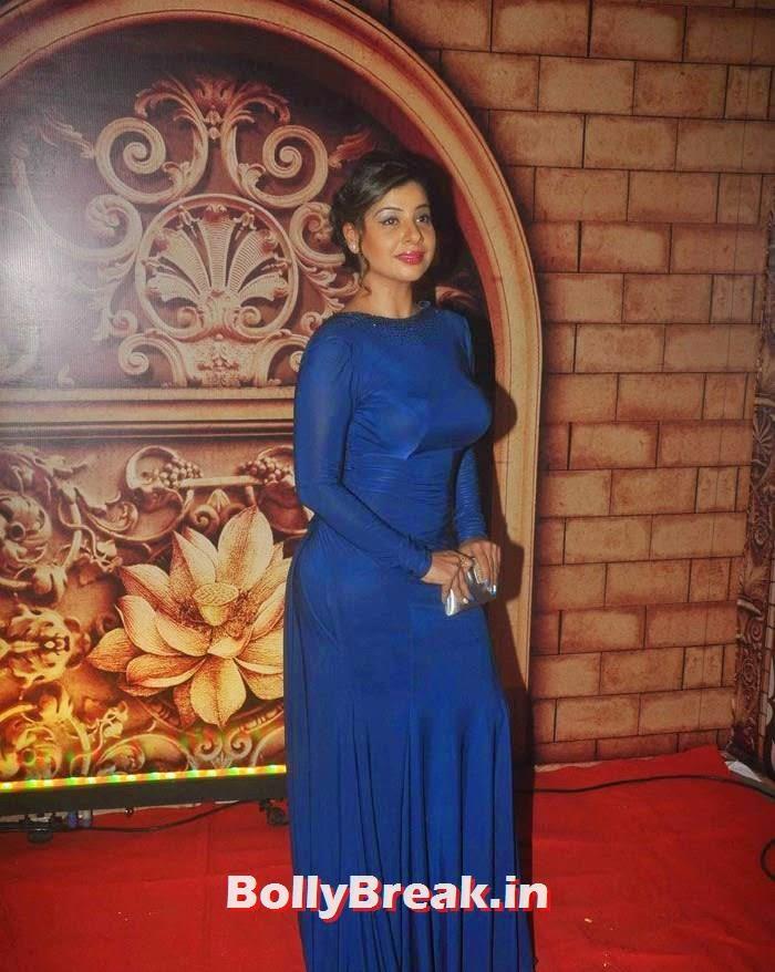 Sambhavna Seth, Zee Rishtey Awards 2014 Photo Gallery