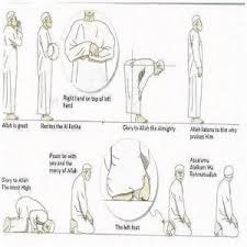Islamic Yoga Islamic Yoga, islamic Images, islamic photos, namaz positions, exercise in namaz, salat, similarities between yoga and namaz, namaz the yoga of islam, yoga in quran, fatwa on yoga