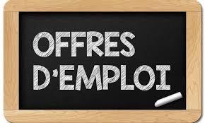 Offre d'emploi en Afrique: Chargé supérieur du risque financier
