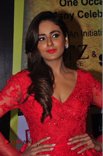 Actress Model Parul Yadav Stills in Red Long Dress at South Scope Lifestyle Awards 2016 Red Carpet  0036.JPG
