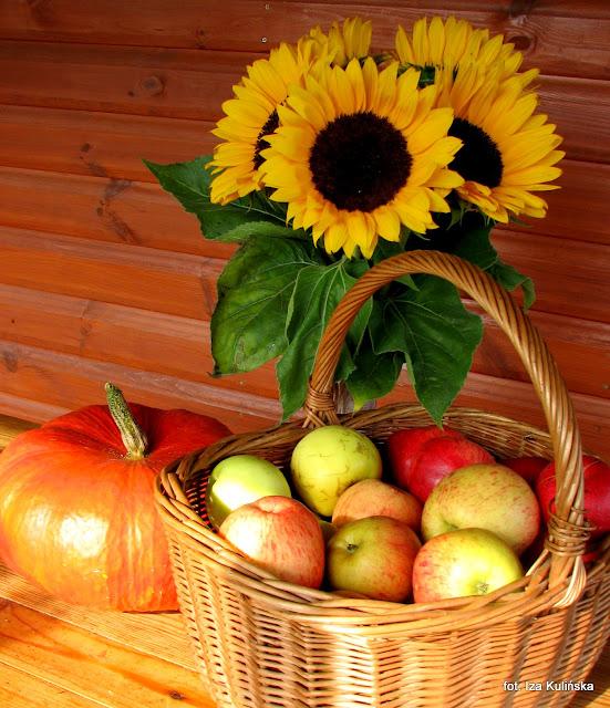 Jabłka na zimę - prażone do szarlotki i skórki na herbatkę