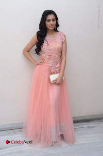 Actress Neha Hinge Stills in Pink Long Dress at Srivalli Teaser Launch  0151.JPG