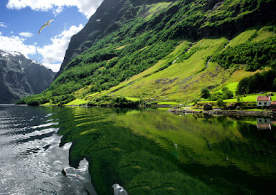 The Lycefjord, Norway