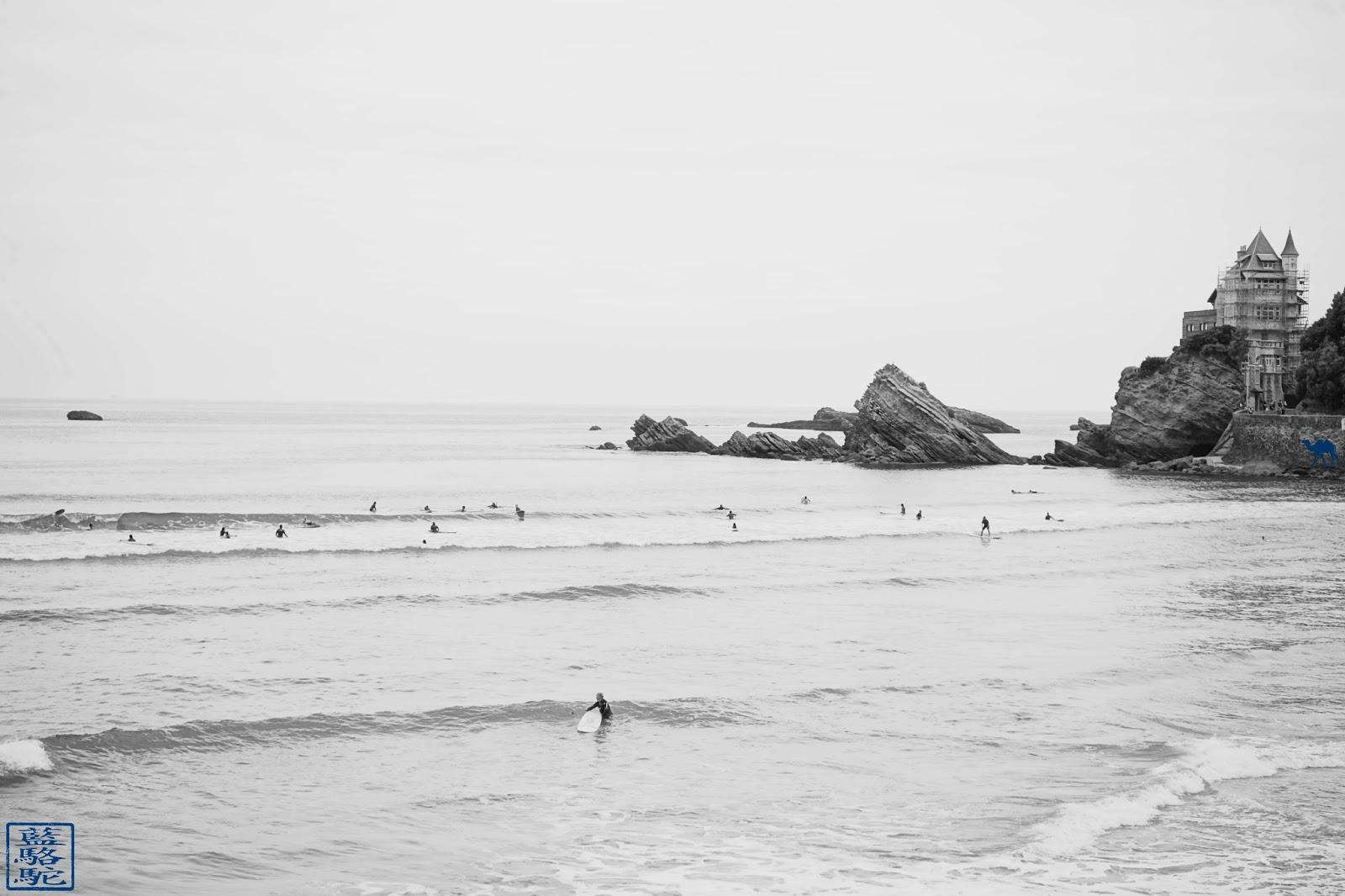 Le Chameau Bleu - Plage de la cote des basques - Biarritz BAB