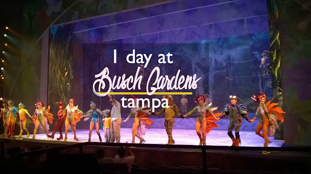 How to Spend 1 Day at Busch Gardens Tampa without Kids | CosmosMariners.com
