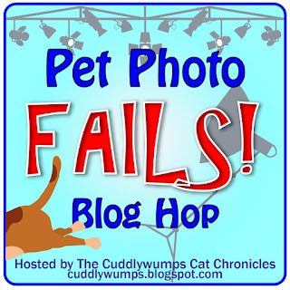 Pet Photo Fails! Blog Hop