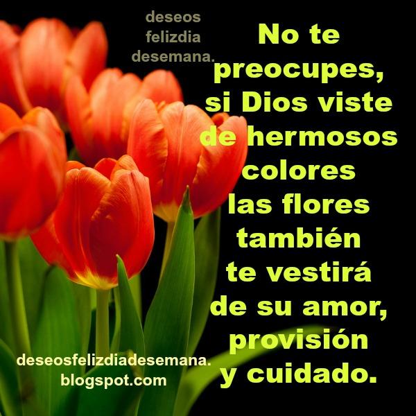 Frases Bonitas Cristianas Buenos Deseos En Este Dia Imagenes Y