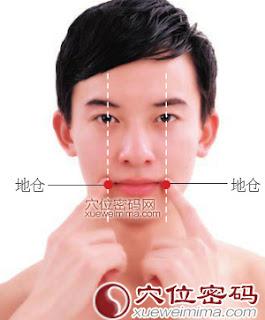地倉穴位 | 地倉穴痛位置 - 穴道按摩經絡圖解 | Source:xueweitu.iiyun.com