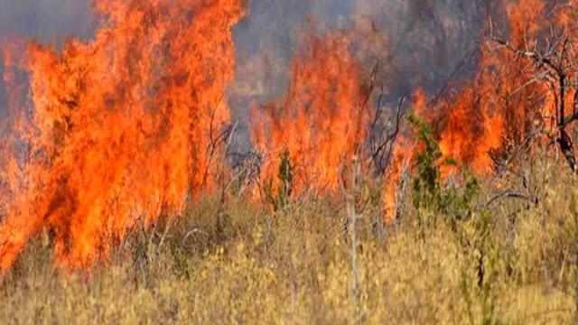 Δ. Λυμπεροπούλου: Παιχνίδια με την φωτιά και την πολιτική προστασία στην Πελοπόννησο