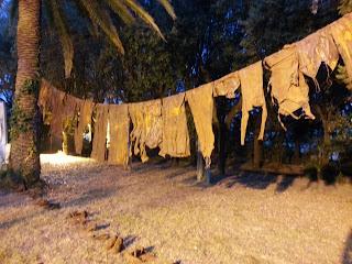 Pac180: Le serate che illuminano Livorno