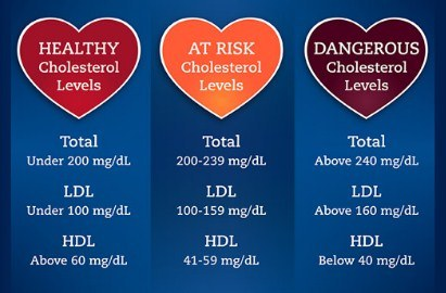 What Is Total Cholesterol?