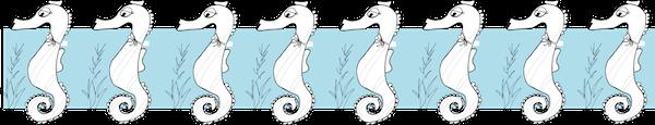 seahorse border