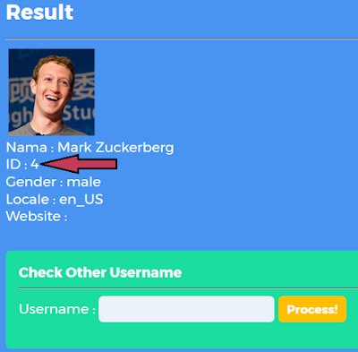 Cara Cepat Dapat ID FB dengan PubiwayTools
