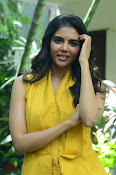 Kalyani PriyaDarshin at RanaRangamPressmeet-thumbnail-9