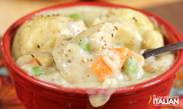 close up photo of a dish of chicken and dumplings
