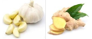 Nutritional contents of ginger and garlic
