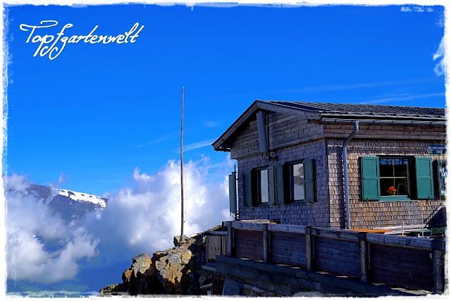 Edelweißhütte | Großglockner | nach Sonnenaufgang - Blog Topfgartenwelt